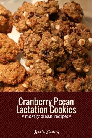 Cranberry Pecan Lactation Cookies.jpg