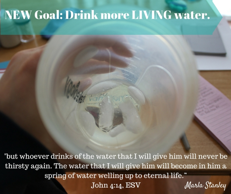 new goal drink LIVING water