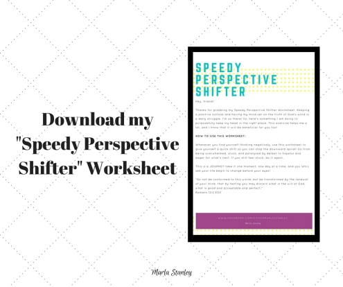Speedy Perspective Shifter