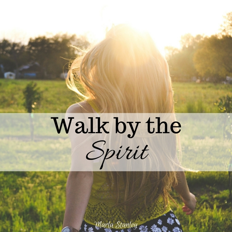 walk by the spirit.jpg